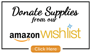 amazon-wish-list-living-and-learning-northville-mi